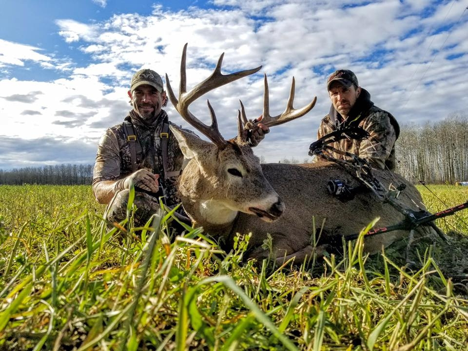 Whitetail Hunts Alberta
